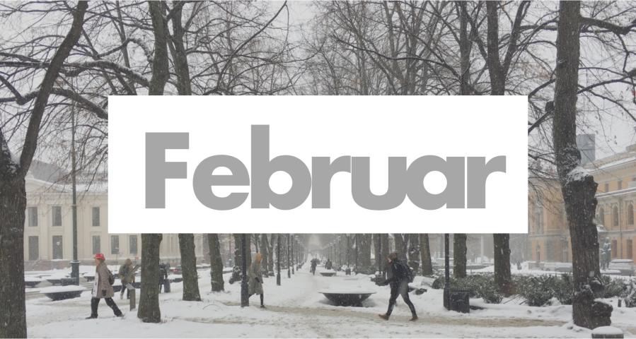 Skjermbilde 2019-02-10 kl. 20.31.23